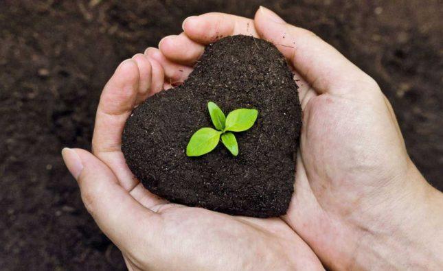 Dans le monde de demain, l'écologie est l'affaire de tous